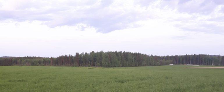 Maatalous1